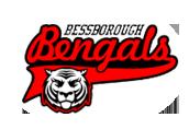 Bessborough Bengals
