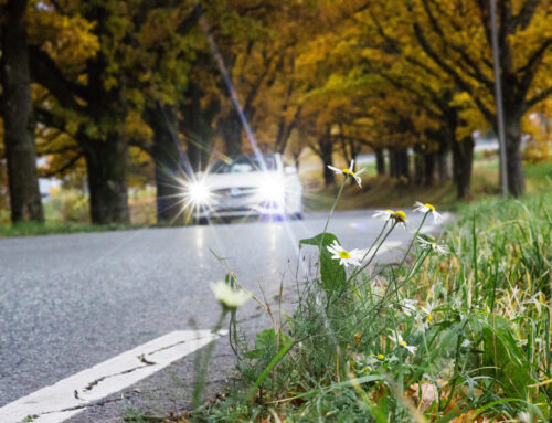 5 Top Ways to Avoid an Accident